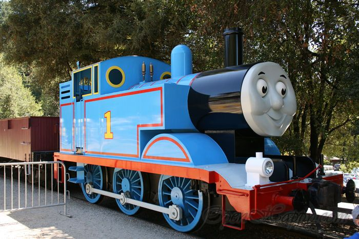 Roaring Camp Railroads (Felton): Owned and operated by the same organization which runs the Skunk Train the Roaring Camp hosts a number of different trains throughout the year including a beach train and forest train. They also feature other specials including